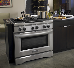 Commercial Style Dual Fuel Range
