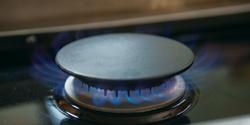 FiveStar Sealed Burner
